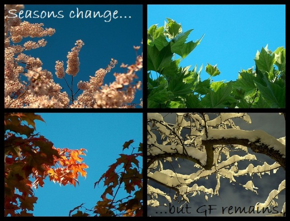 seasons change but gluten-free remains