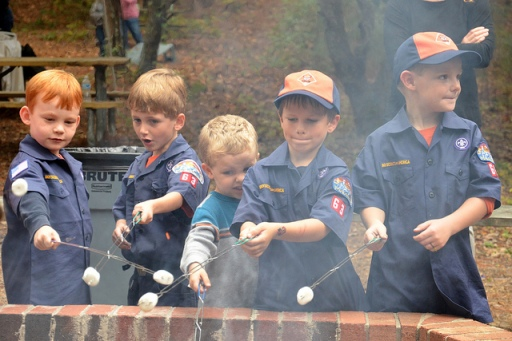 Boy Scouts toasting marshmallows