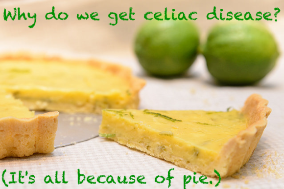 Why do we get celiac disease? (It's all because of pie.)